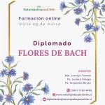 Flores 2021 IG